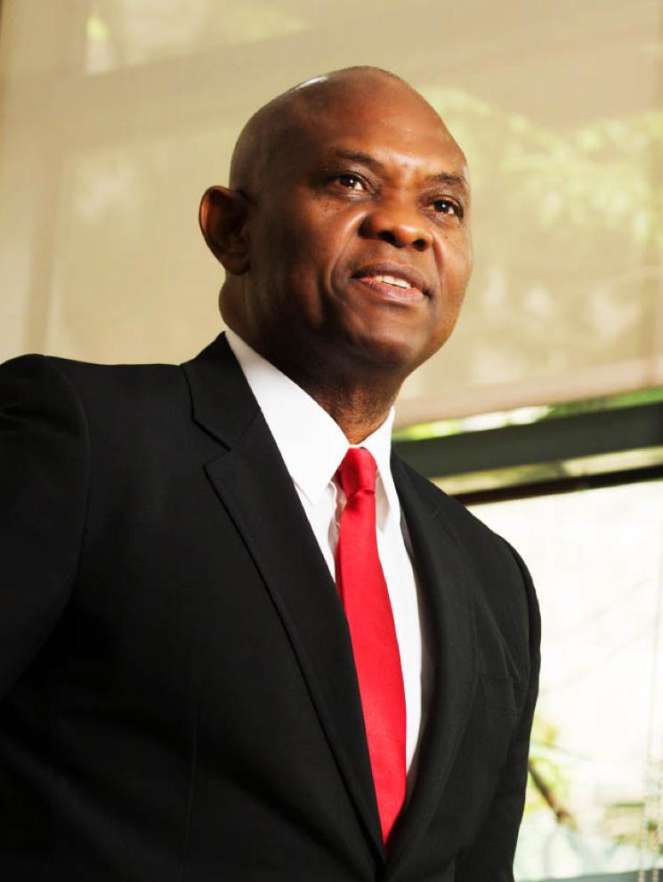 Tony Elumelu prononcera un discours luminaire à la TICAD au Japon