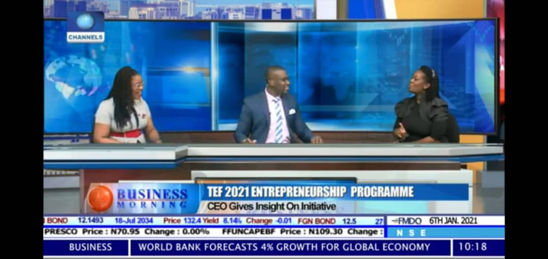 TEF CEO Ifeyinwa Ugochukwu Shares Insight into the 2021 TEF Entrepreneurship Programme on ChannelsTV